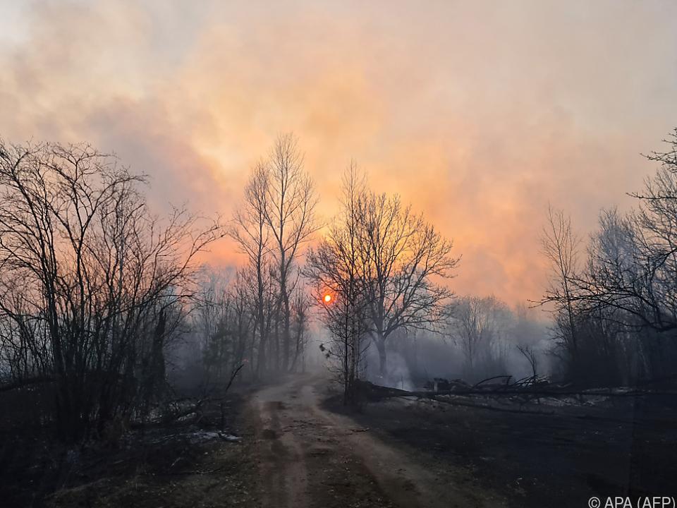 Die Feuer sind vergangenen Samstag ausgebrochen