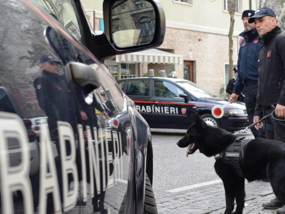 Carabinieri Kontrolle Hund Spürhund