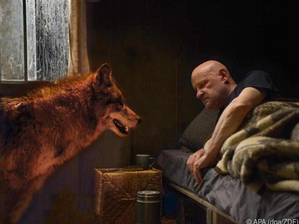 Redl lockte Wolf mit Leberwurst heran