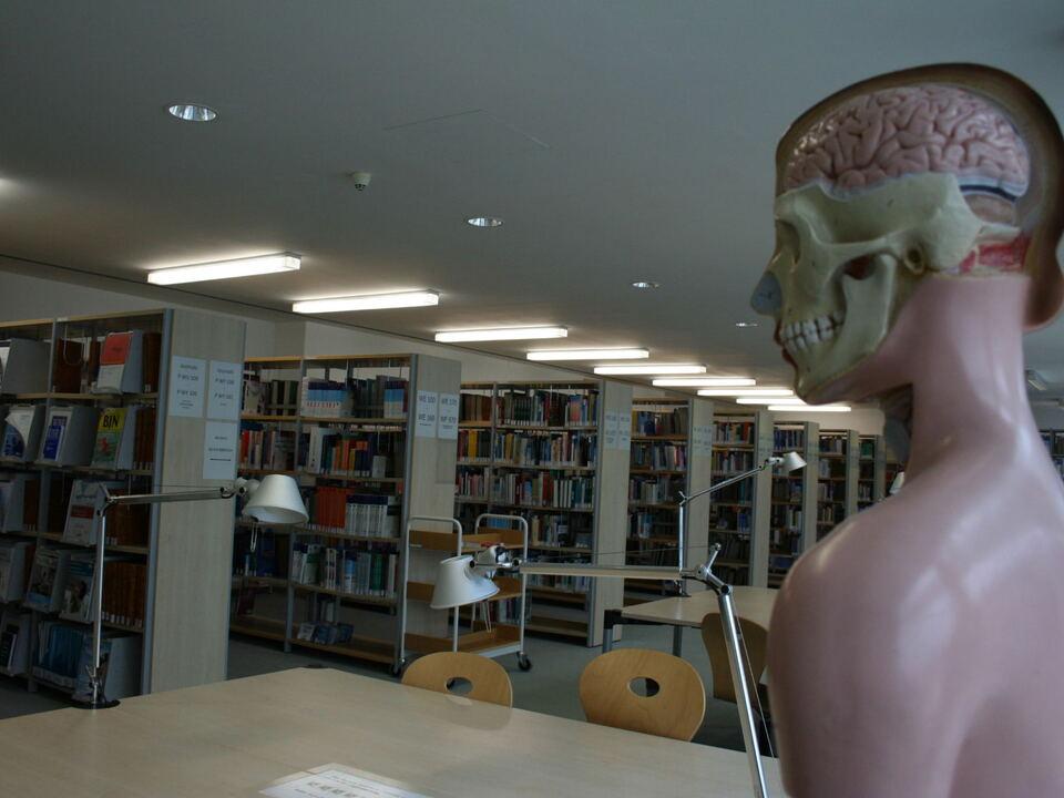 Bibliothek biblioteca