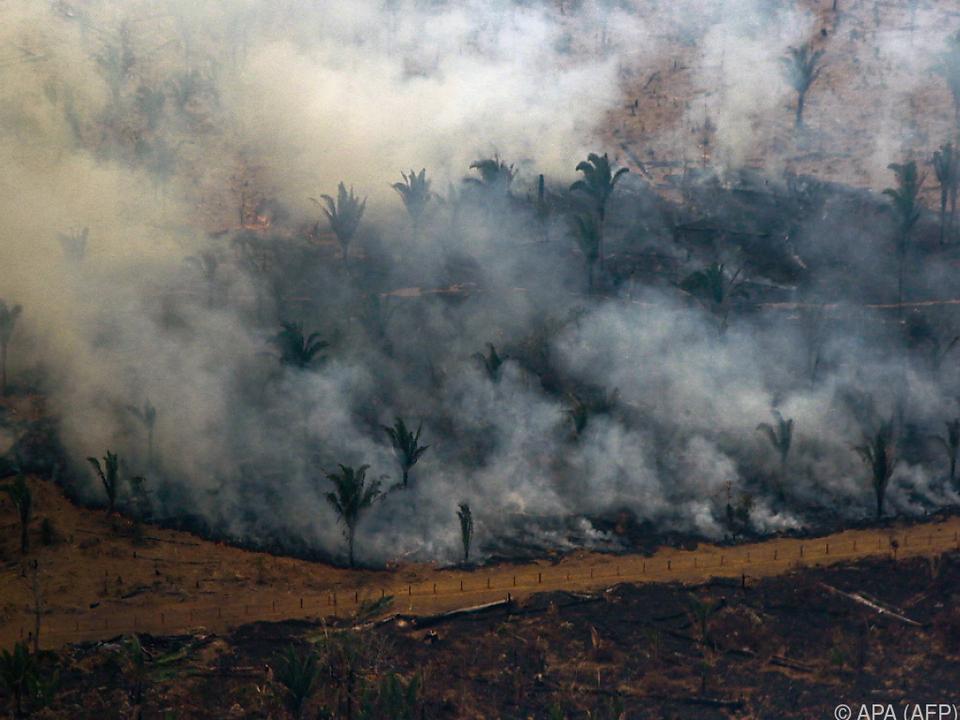 Die Arbeit von Umweltbehörden kann  nicht ersetzt werden