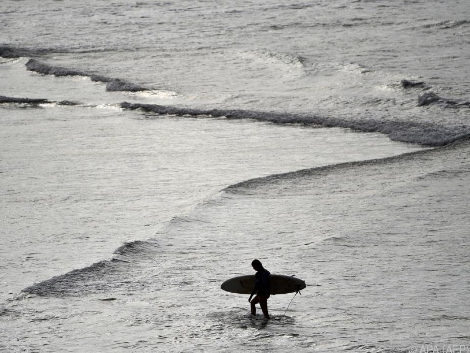 Ein Surfer vertrieb einen Hai mit Faustschlägen