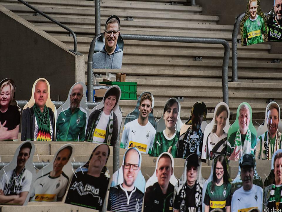 Fans aus Pappe in Mönchengladbach