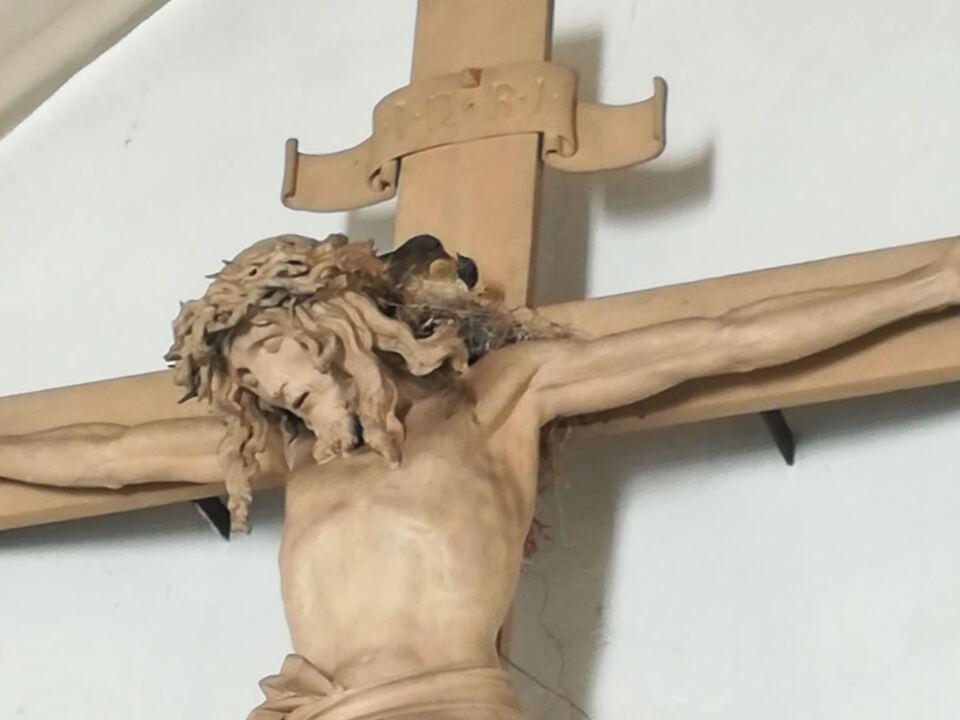 Amsel Kreuz Corona