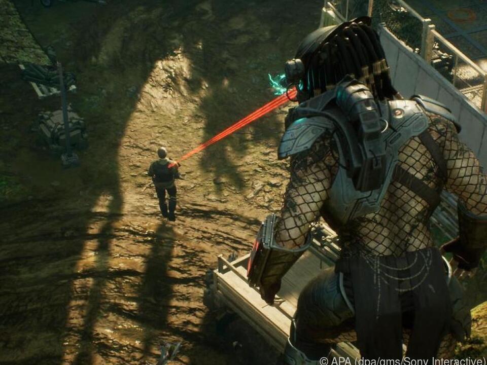 Gleich kann der Predator eine neue Scharte in seine Rüstung wetzen