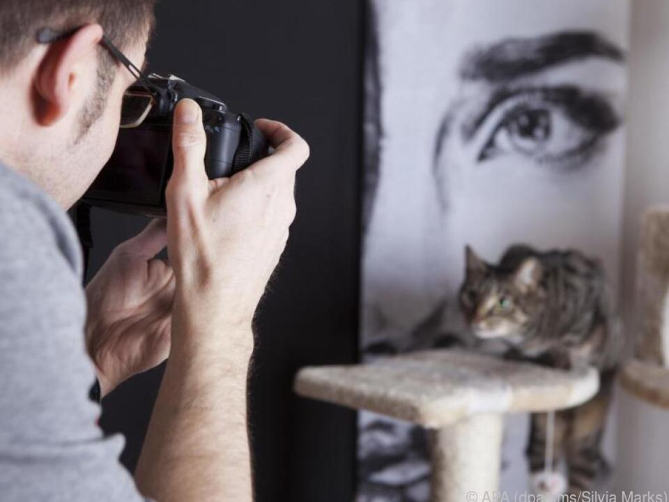Mit einer App lässt sich die Fotokamera auch zu einer Webcam umfunktionieren