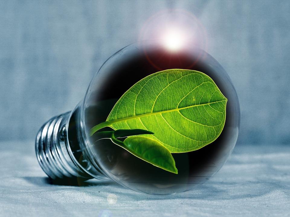 1073735_light-bulb-2631864_1920