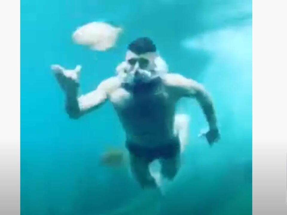 youtube-aquarium