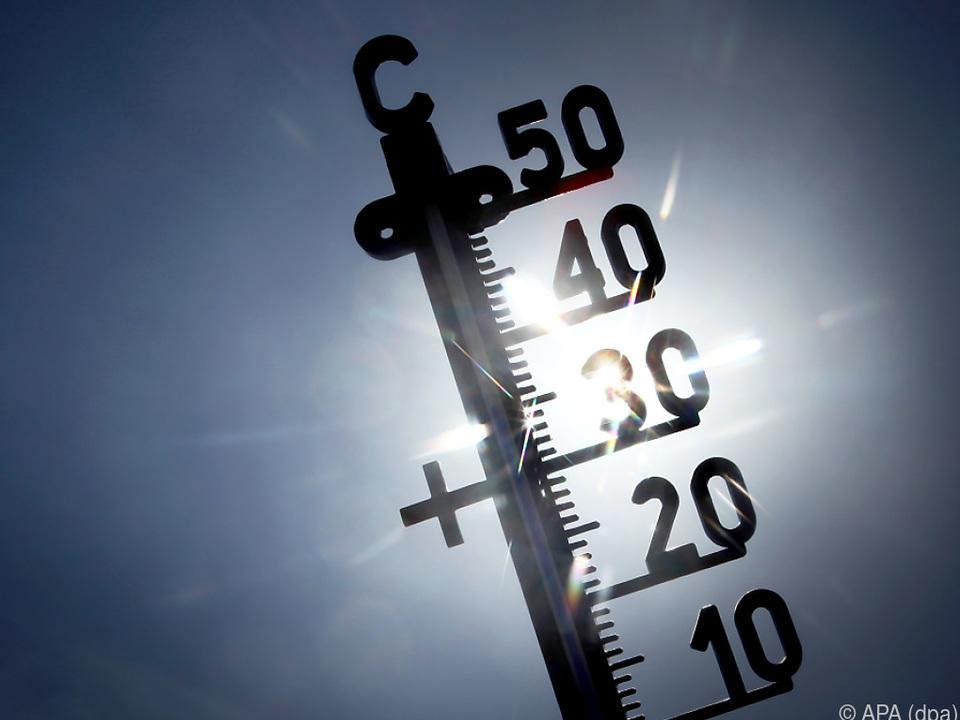 Lange Hitzewellen blieben diesen Sommer aus