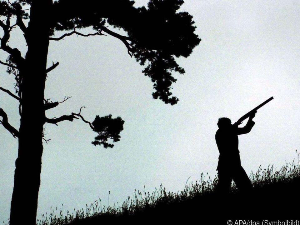 Siebenköpfige Wildererbande in Oberösterreich geschnappt wilderer gewehr jäger