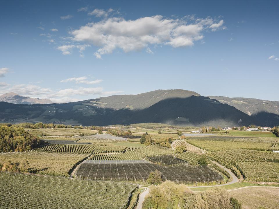 Obstbau Südtirol
