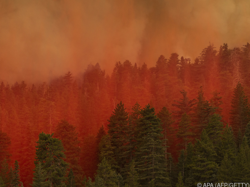 Feuer verfärbt diesen Wald in Kalifornien