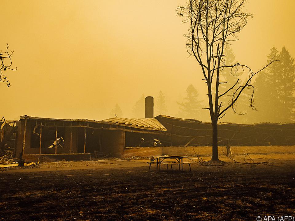 Rund 2.000 sind beschädigt oder abgebrannt