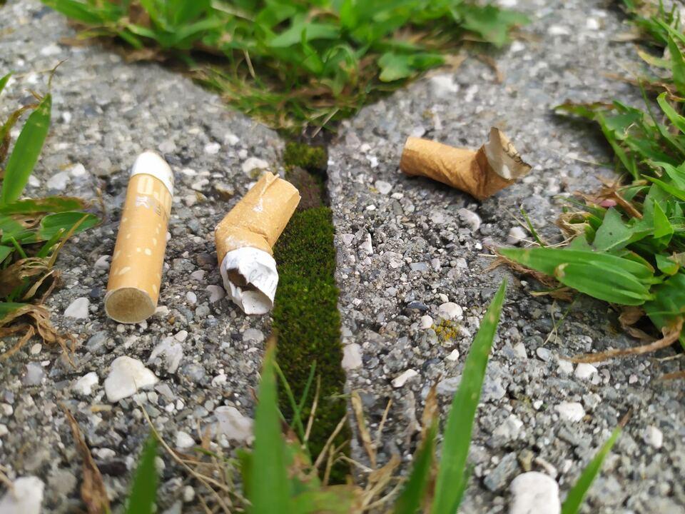 Zigaretten_mozziconi1