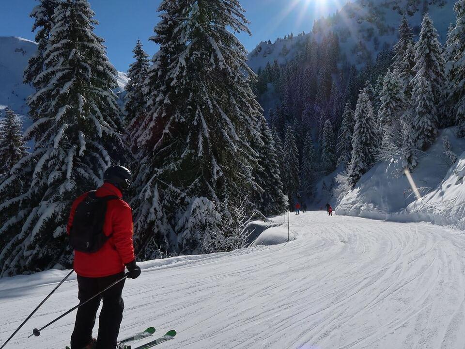 ski symbol fotol winter 1082161_sci_foto_unsplash