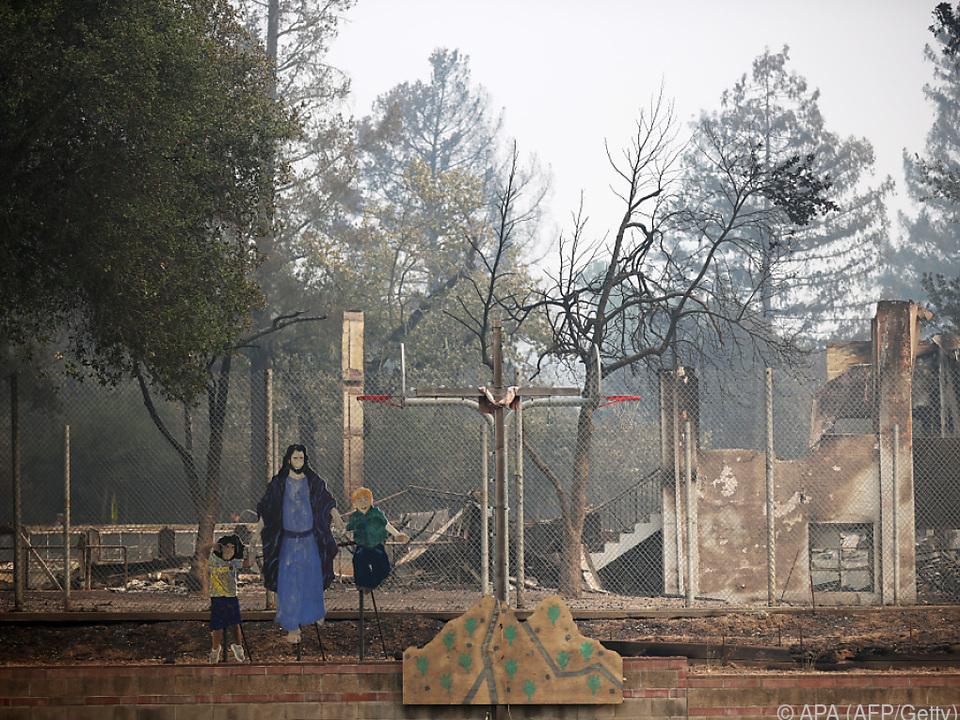 Waldbrände hinterlassen Spur der Zerstörung