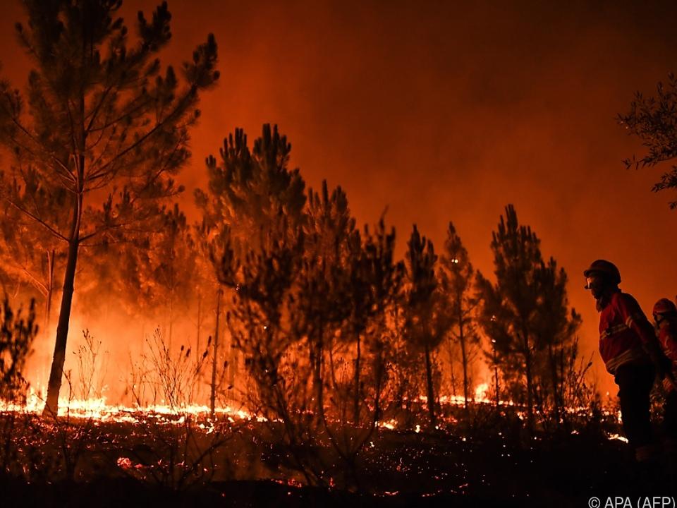 Hintergrund der Klage sechs junger Portugiesen waren Waldbrände von 2017
