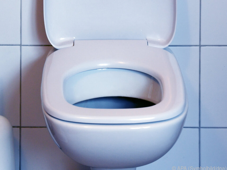 In Schweden hat ein jeder ein stilles Örtchen wc toilette symbol klo bad