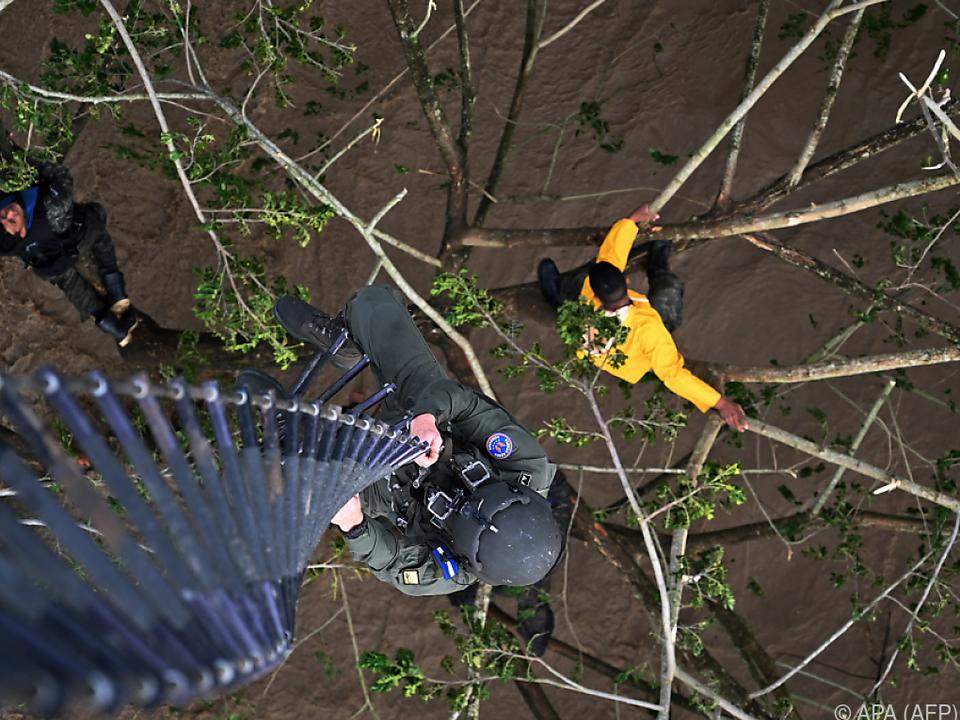 Menschen retteten sich auf Bäume