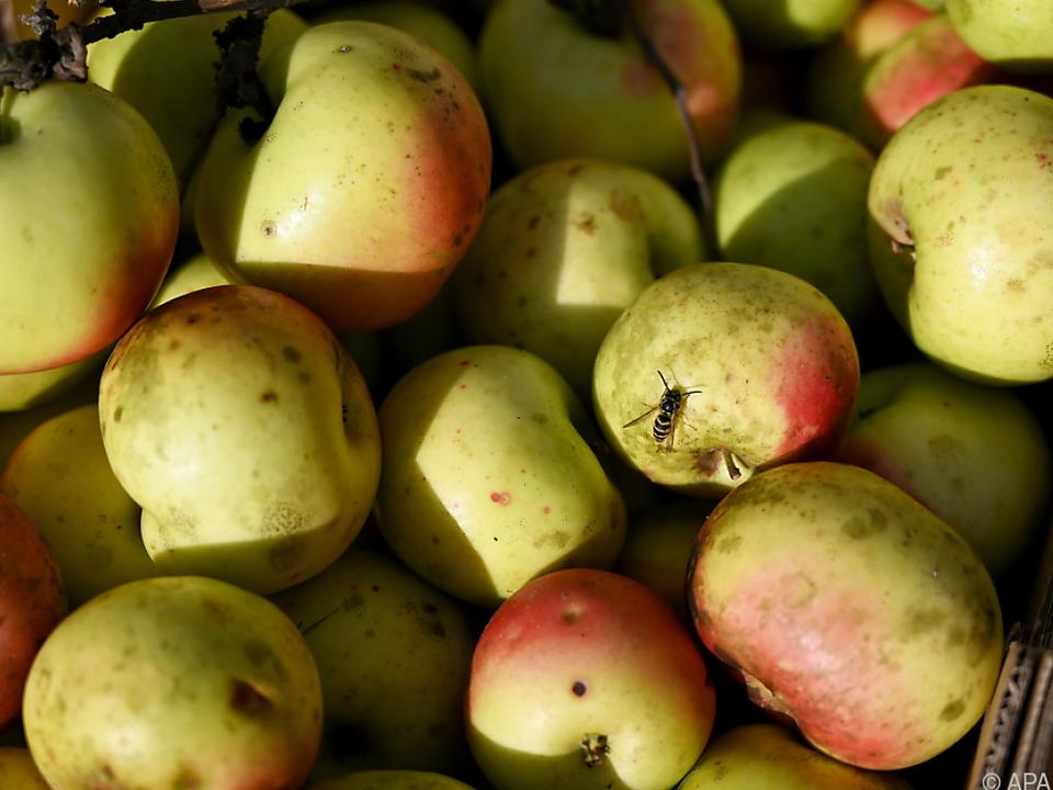 Das Steuergeld wurde in den Betrieb des Obstbauern investiert
