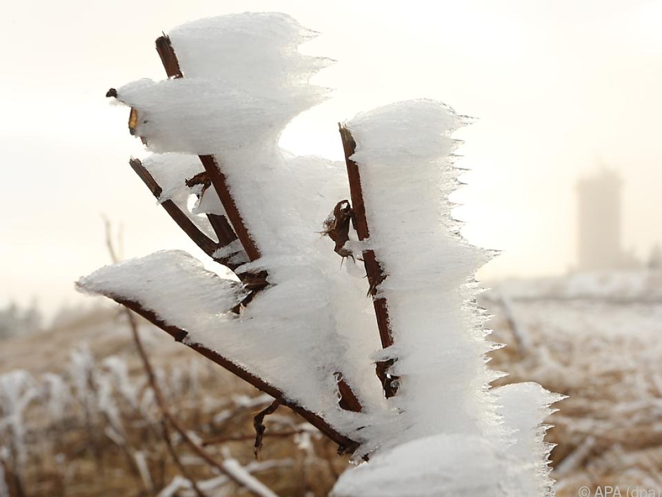 Der Winter kommt heuer mit voller Wucht
