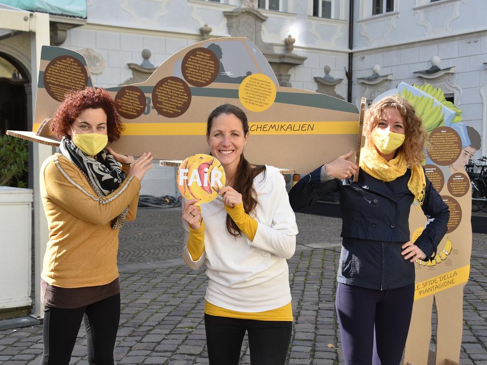 Hello Yellow Silvia Di Panfilo -KFS- Verena Gschnell - OEW - Brigitte Gritsch - Weltladen-copyr OEW