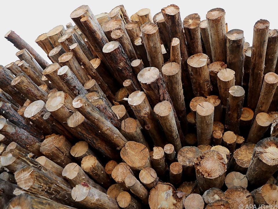 HS Timber baut Sägewerk in Weißrussland
