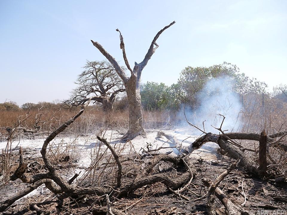 Schäden durch Unwetter, Waldbrände und andere Naturkatastrophen