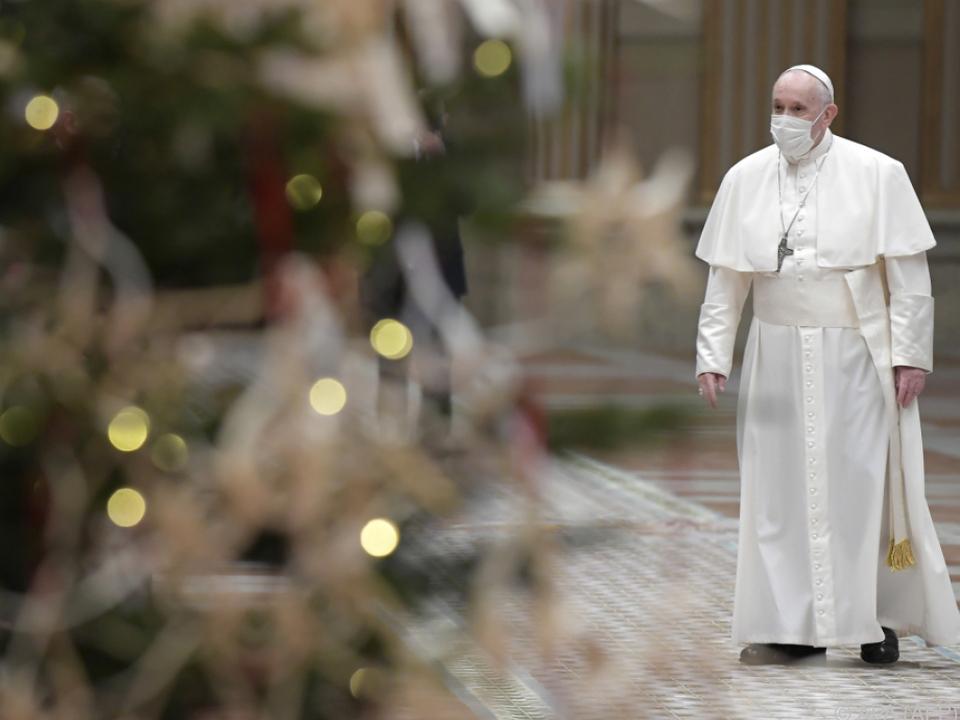 Papst Franziskus in der Apostolischen Bibliothek