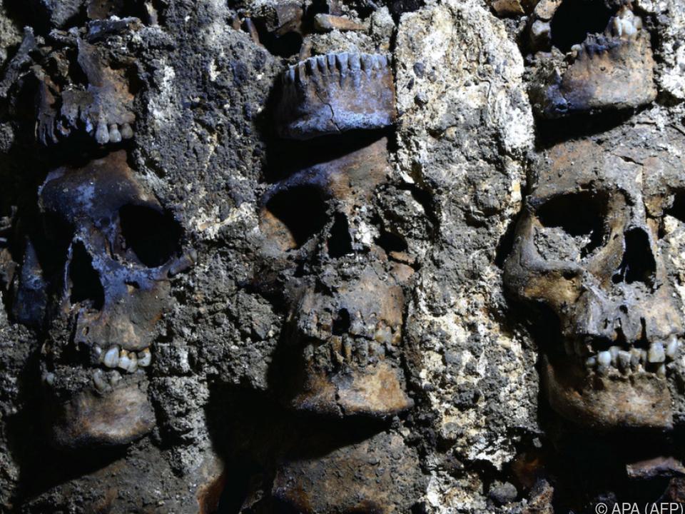 Weitere 119 S Scghädel wurden entdeckt