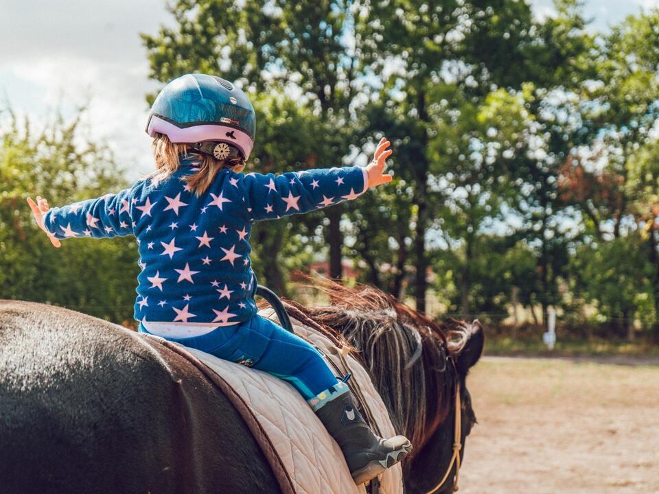 pferd Bei der Reittherapie werden unterschiedliche Übungen auf dem Pferd gemacht, die die ausschließliche Aufmerksamkeit des Patienten erfordern.