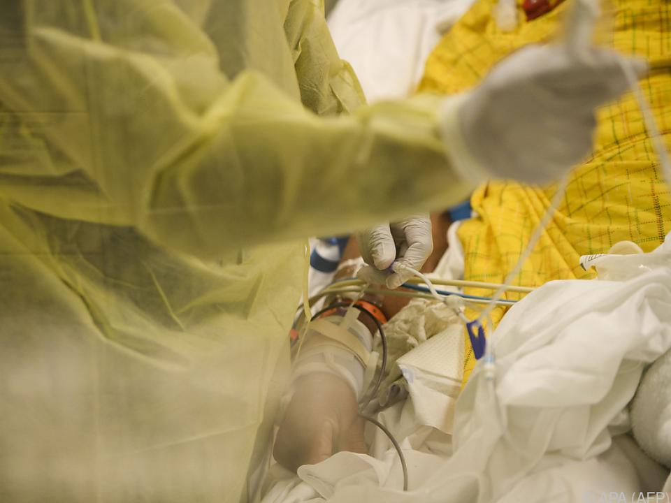 Insgesamt bisher 365.000 Pandemie-Tote in den Vereinigten Staaten