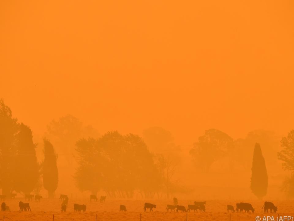 Klimakrise bleibt trotz Corona-Pandemie Thema
