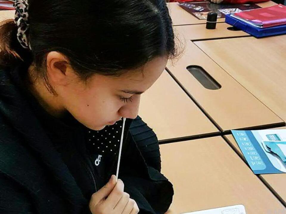 nasenbohrer test Corona-Selbsttest an den Schulen