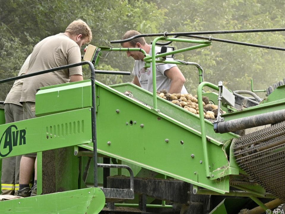 EU debattiert Verknüpfung von Agrargeldern mit Arbeitnehmerrechten
