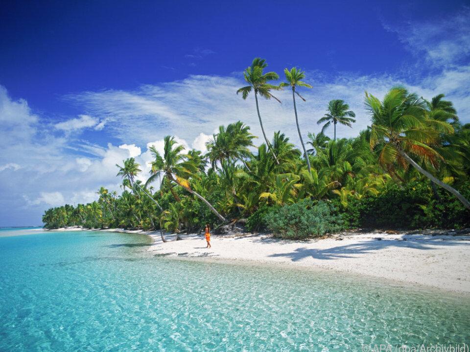 Ohne Steuersorgen unter Palmen