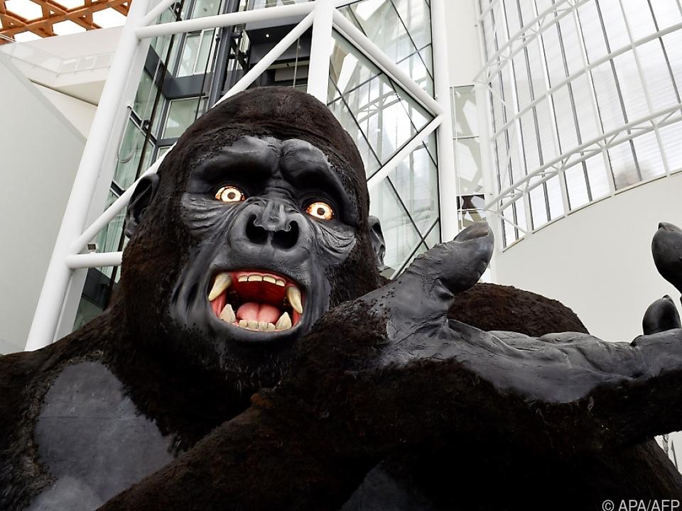 King Kong hat den Coronarekord in seinen Händen