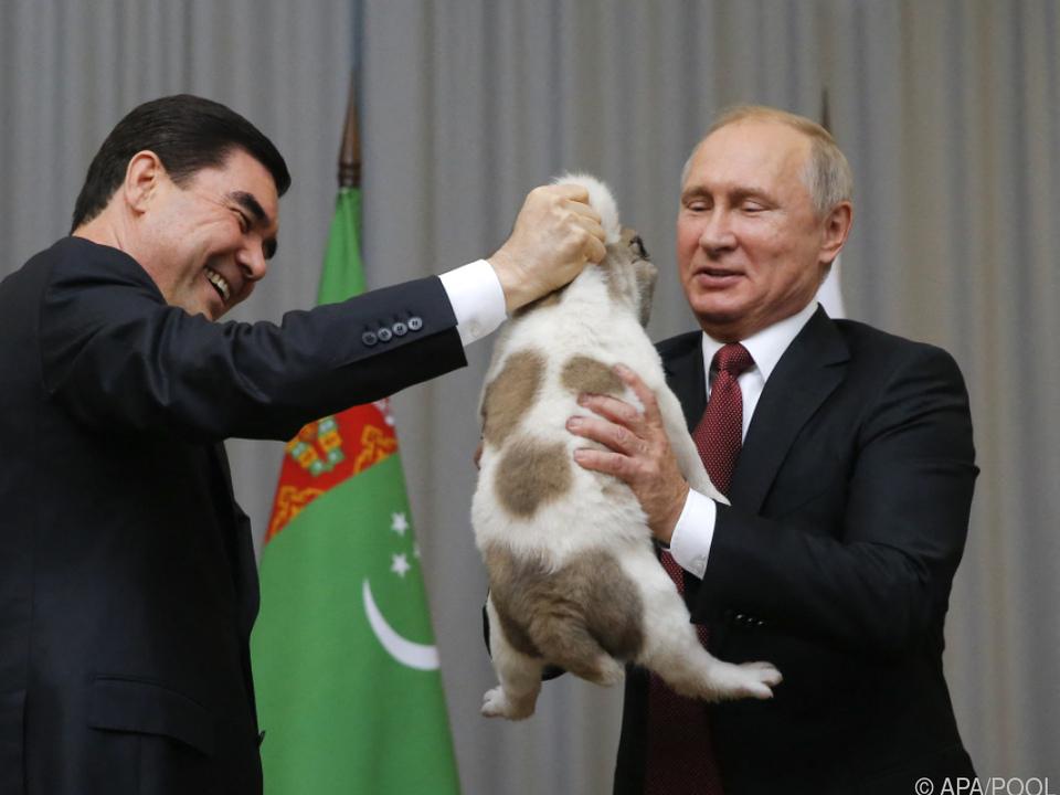 Russlands Präsident Putin bekam 2017 einen Alabai überreicht