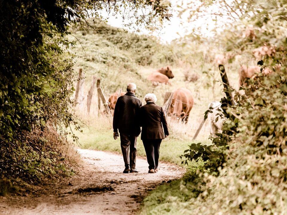 ältere Menschen Senioren Paar Alter