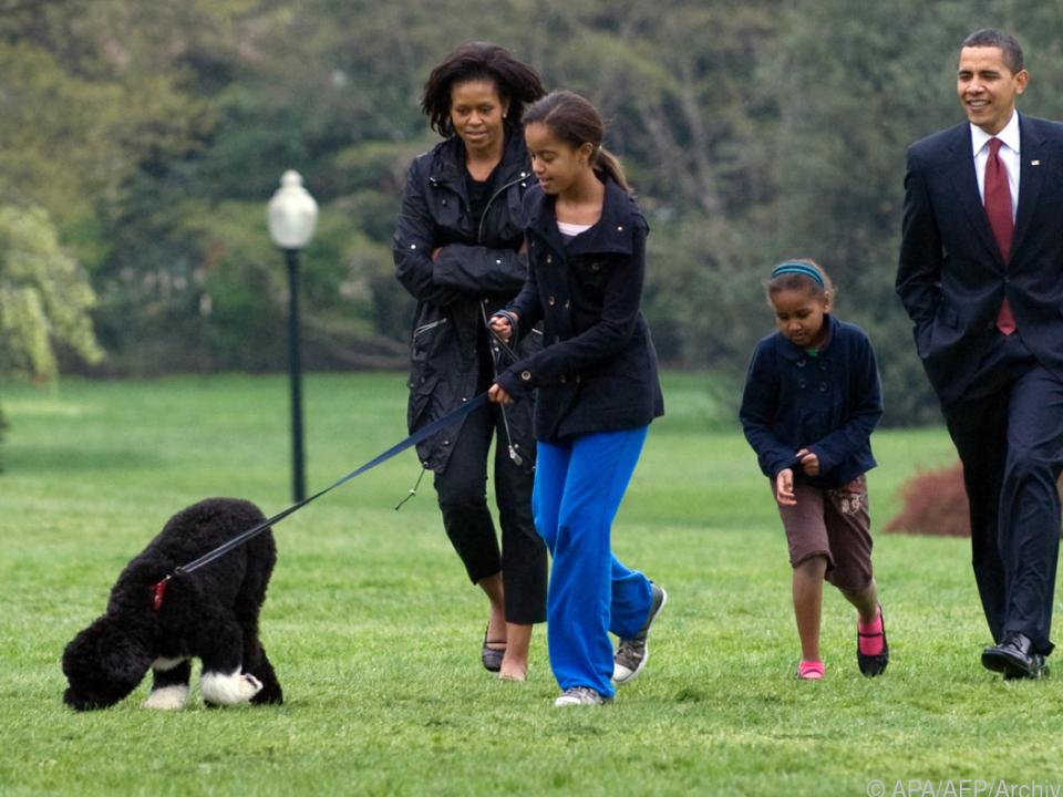 Die Obamas müssen nun ohne ihren Hund auskommen