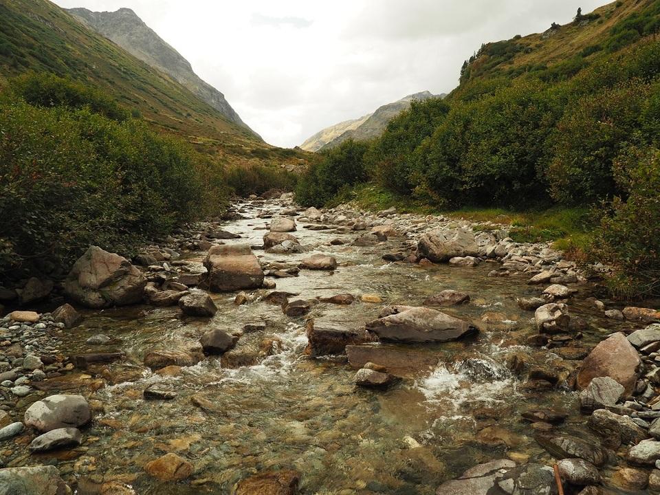 Fluss Foto Wolfgang Mark