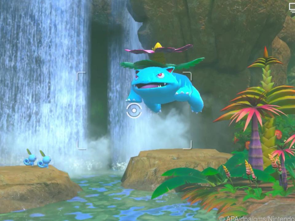 Für dias Bild von Bisaflor vor einem Wasserfall gibt es sicher eine gute Bewertung