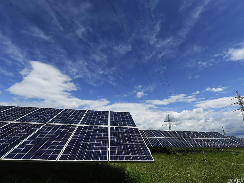 WWF fordert Photovoltaik-Masterplan