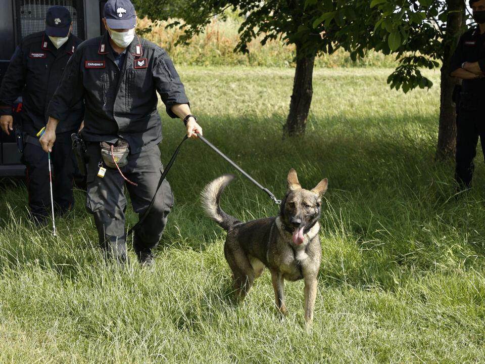 I carabinieri con il cane molecolare nei pressi dell\'azienda agricola \