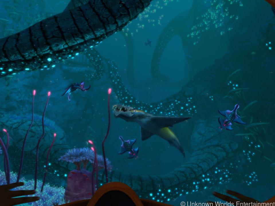 Auf Spieler warten riesige Unterwasserwelten mit netten und unfreundlichen Bewohnern