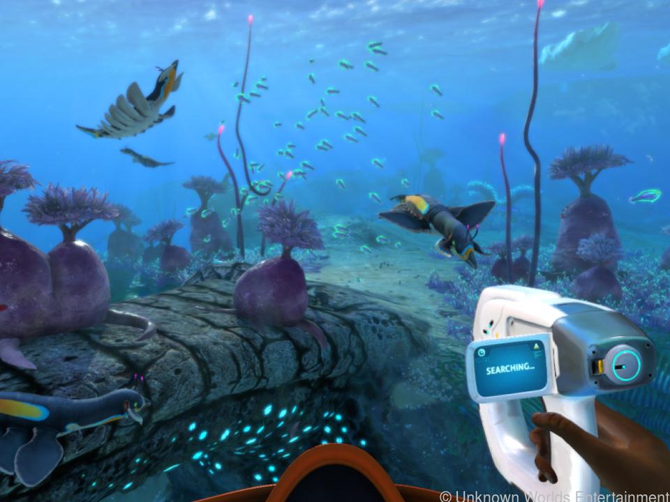 Scanner an: Unter Wasser geht Forscherin Robin auf Spurensuche