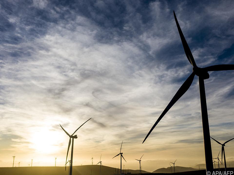 Nachhaltigkeit für viele Österreicher gleich Umweltschutz
