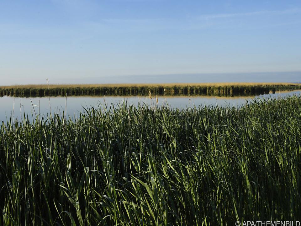 UNESCO-Beirat will Einstellung des Großprojekts am Neusiedler See