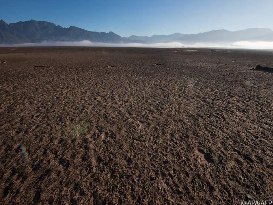 Zunehmende Hitze sorgt für Dürren