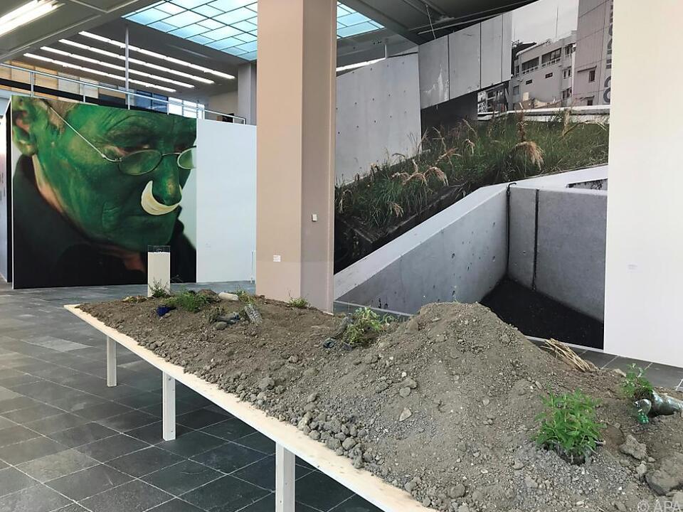 Lois Weinberger Ausstellung im Belvedere 21